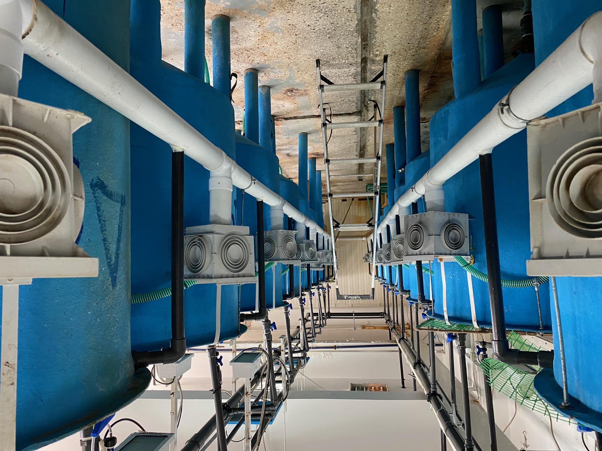 Το Εργαστήριο Πειραματικής Σίτισης (Aqua Lab) Ιχθύων στις εγκαταστάσεις του ΕΛΚΕΘΕ που φιλοξενούνται στο Γεωπονικό Πανεπιστήμιο Αθηνών.